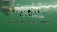 Milfoil in Eagle Lake Summer 2018 Video